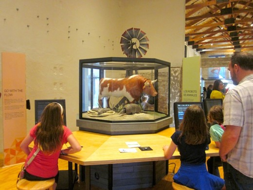 interactive robots at the new Hill Country Science Mill in Johnson City, TX
